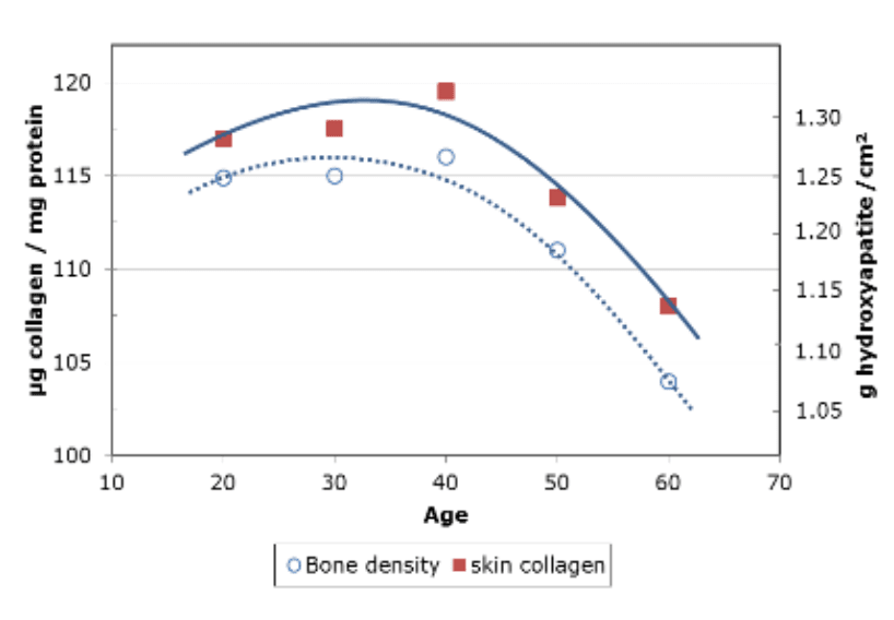 AGE INDUCED COLLAGEN LOSS