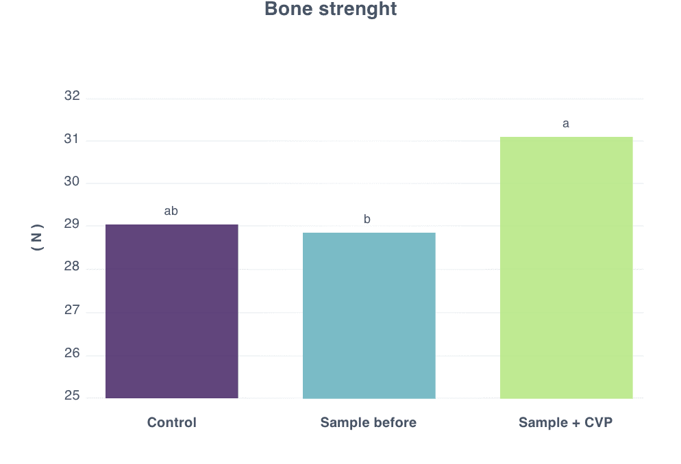 bone streng